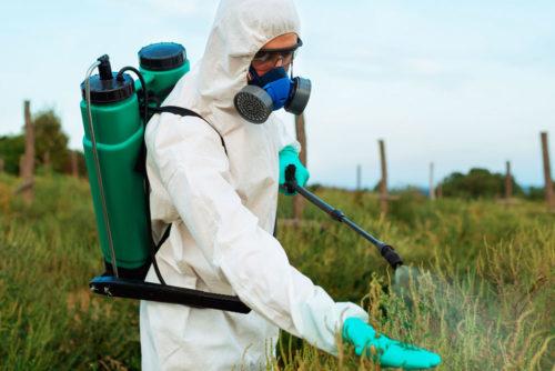 Как использовать гербициды осенью?