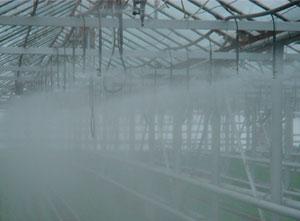 Туманники и распылители