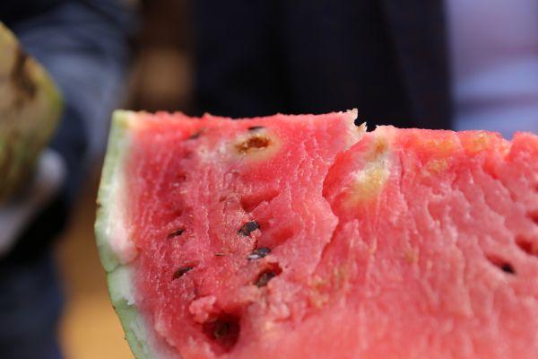 В столице запретили продажу 15 тонн арбузов